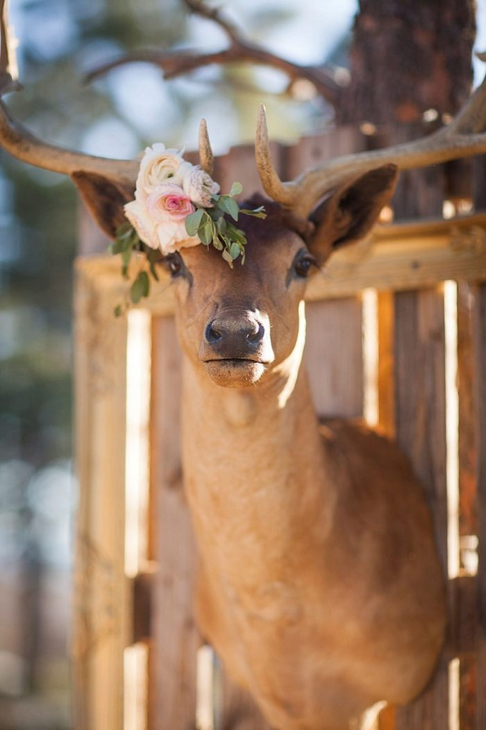 21 Colorado Same Sex Boho Wedding Inspiration | Katie Keighin Photography |via MountainsideBride.com
