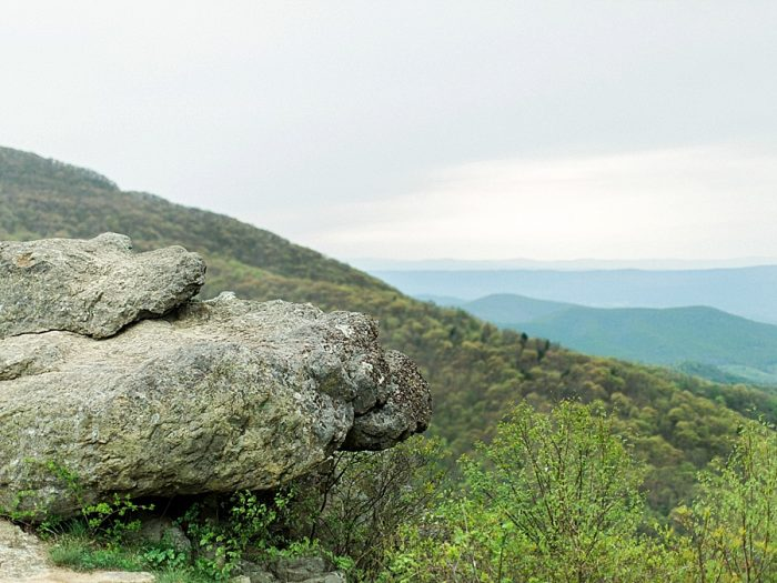 15 Windswept Editorial Shenandoah National Park | Molly Lichten | MountainsideBride.com