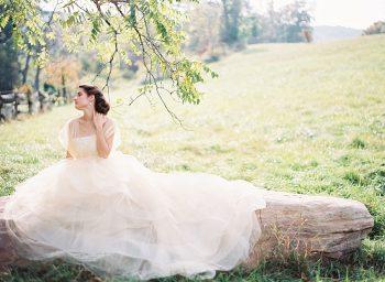 21 Alleghany Mountains Old Dairy Farm Wedding Inspiration Natural Retreats Via MountainsideBride.com
