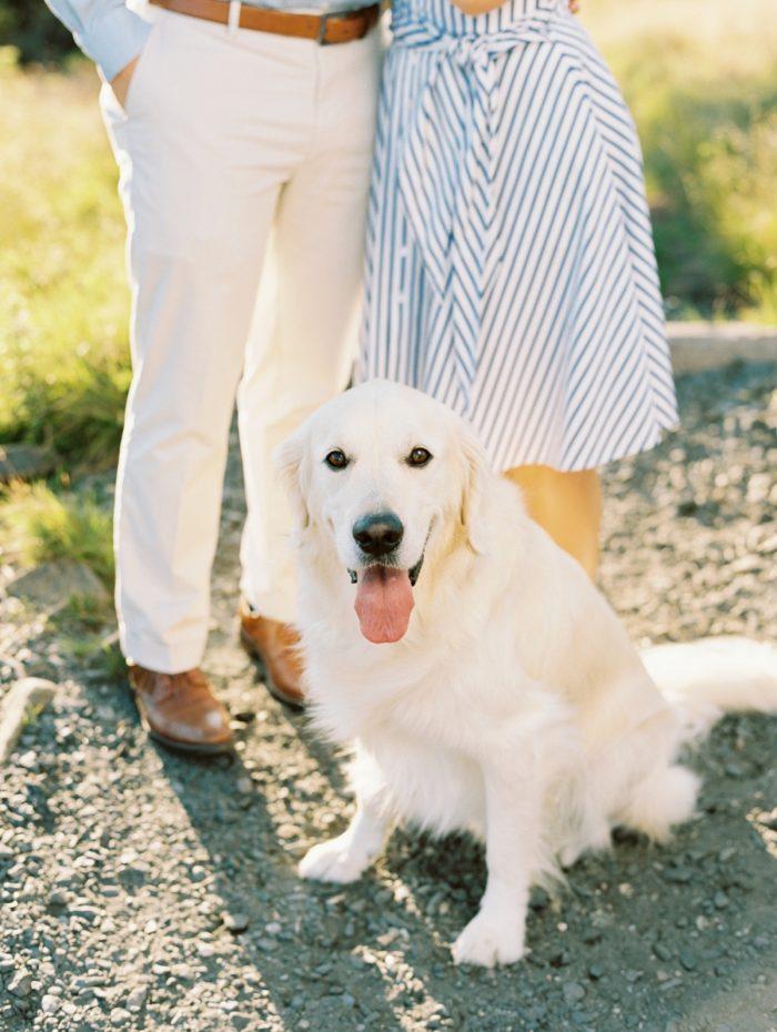 3 Roan Mountain Engagement JoPhotos Via MountainsideBride.com