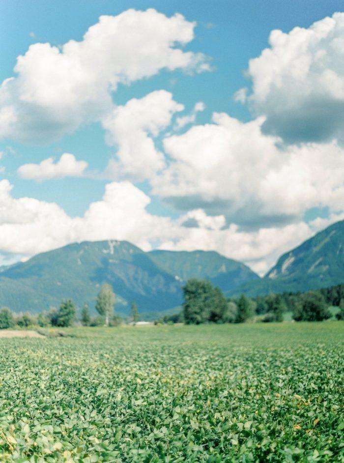 35 Mountains Colorful Austrian Wedding Theresa Pewal Via MountainsideBride.com