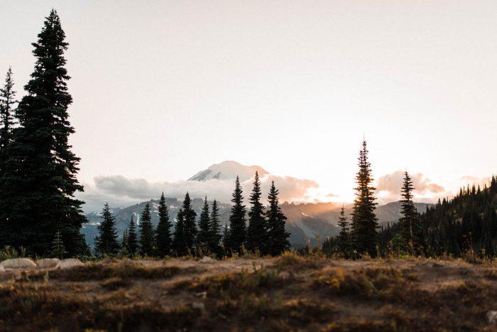 10 Mount Rainier Engagement Washington National Park The Foxes Photography Via MountainsideBride.com