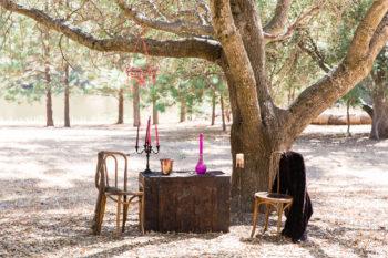 Intimate Elopement Inspiration In Yosemite