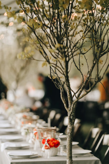 Trees At Wedding Receptions